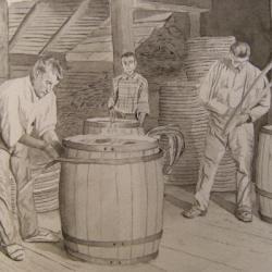 tonneliers ile aux chiens 1902
