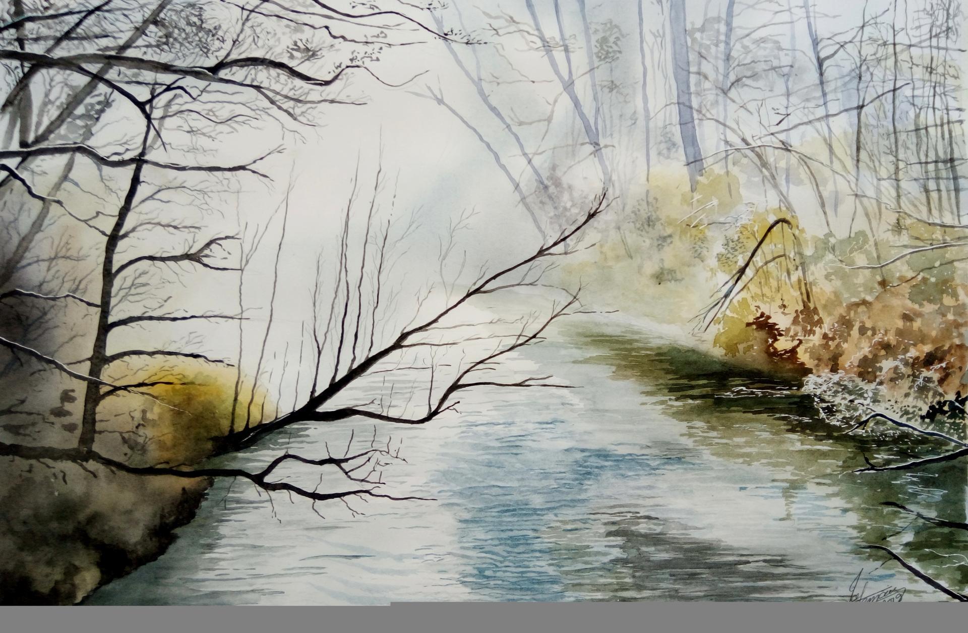 riviere en foret